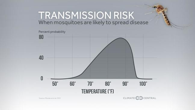 Mosquitoes sticking around longer as El Paso weather stays
